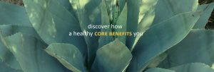 WELLadjusted Chriopractic Wellness Center Discover Your Health