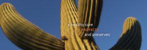 WELLadjusted Chriopractic Wellness Center Lexington KY